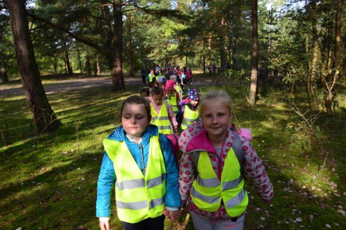 Wycieczka do lasu w Kaczynosie